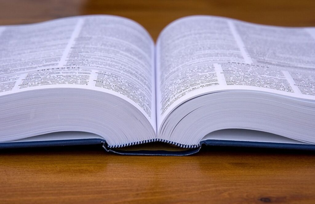 Image of a dictionary.